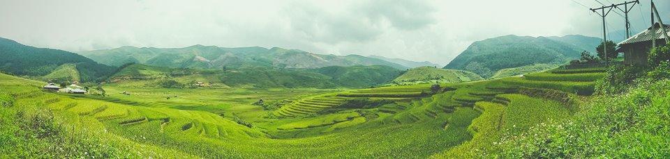 Mu Cang Chai, Yen Bai province, Vietnam (photo taken from my friend's Facebook)